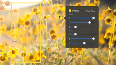 Color Picker extension in action